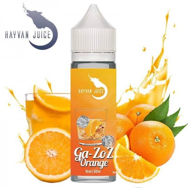 Ga-Zoz Orange Aroma für 60ml - Hayvan Juice