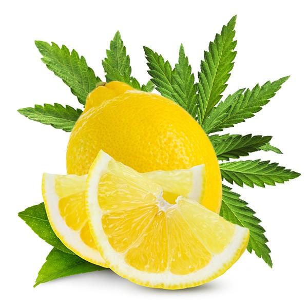 Dark Burner Chill-Out-Aroma Lemon Haze